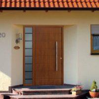 Однопольная входная дверь с отделкой шпоном и глухим стеклопакетом